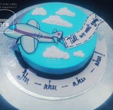 Farewell Cake with Printed Aeroplane FW121