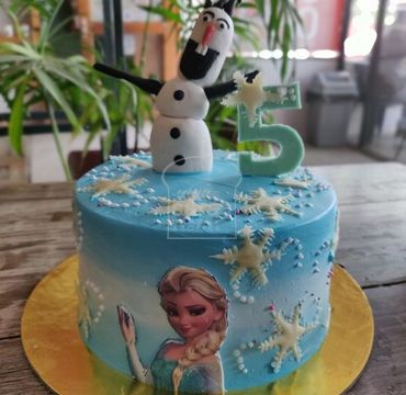 Elsa and Olaf Theme Cake HR205